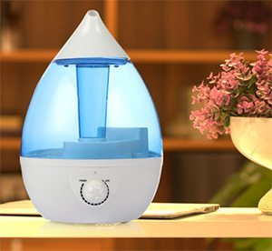 Crane Humidifier Beside a Flower Pot