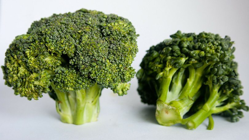 Broccoli is a great BLW food.