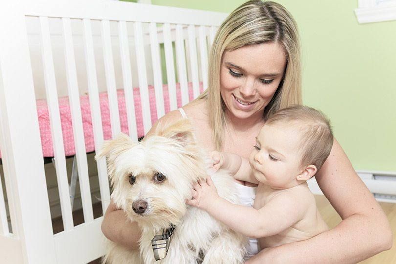 Mother, Baby & Dog